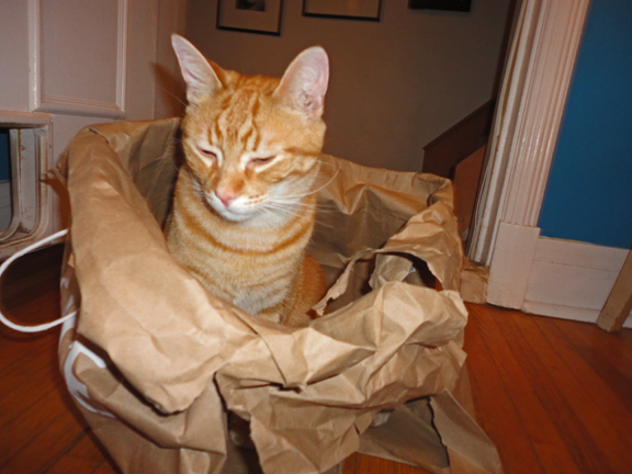 Jack Shadbolt in a bag