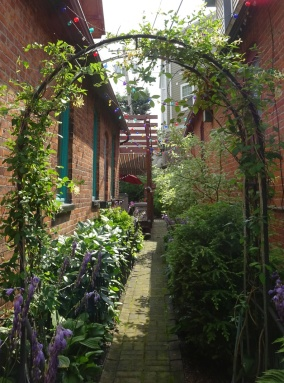 Green Archway discovered on the Buffalo Garden Walk - July 2015