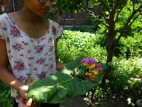 Leaf arranger in the Prospect Community Garden Sunday July 26th