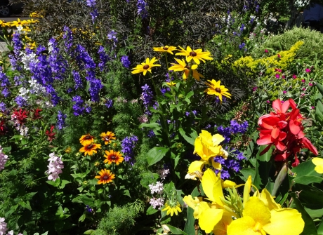 Colourful plantings