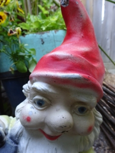 Face from the garden floor Smiling Gnome